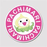 patronesamigurumis.blogspot.com/2017/05/pachimari.html