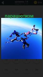 занятие парашютным спортом, в воздухе парашютисты