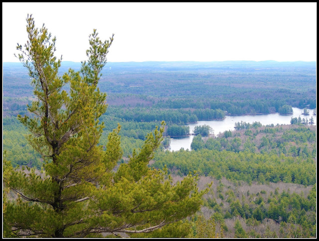 Vistas desde la Fire Tower del Pawtuckaway State Park en New Hampshire