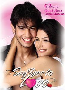 Poster Of Bollywood Movie Say Yes to Love (2012) 300MB Compressed Small Size Pc Movie Free Download worldfree4u.com