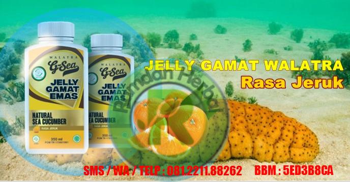 Jelly Gamat Rasa Jeruk G-Sea Walatra
