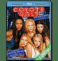 EL BAR COYOTE (2000) UNRATED FULL 1080P HD MKV ESPAÑOL LATINO