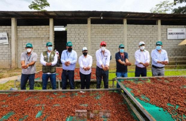 San Martín: titular del Midagri visitó parcelas con cinco gobernadores regionales