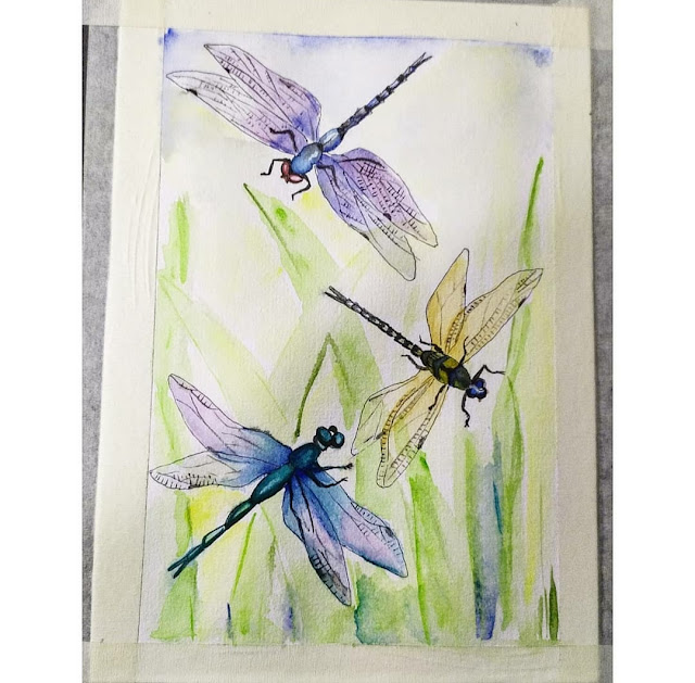 Three dragonflies watercolour painting