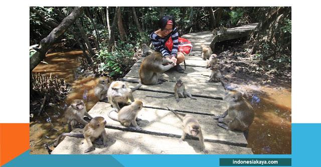 destinasi wisata Pulau Kembang Banjamasin, Kalimantan Selatan.