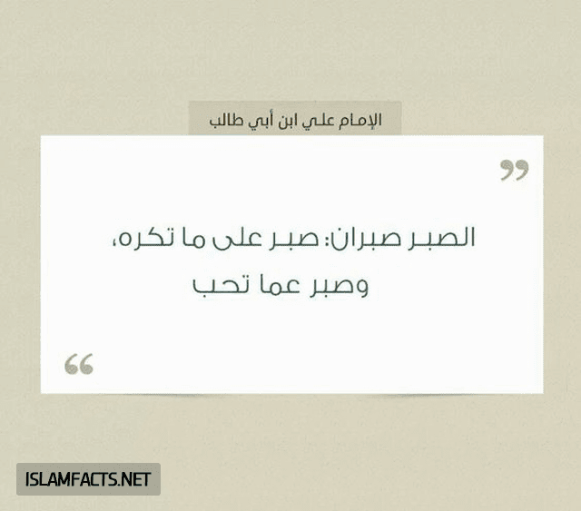 وفاة الامام علي,الامام علي عليه السلام,على بن ابى طالب,مولد الامام الرضا,خيره الامام علي,الإمام علي