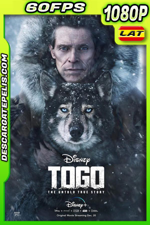 Togo (2019) 1080p 60FPS WEB-DL Latino – Ingles