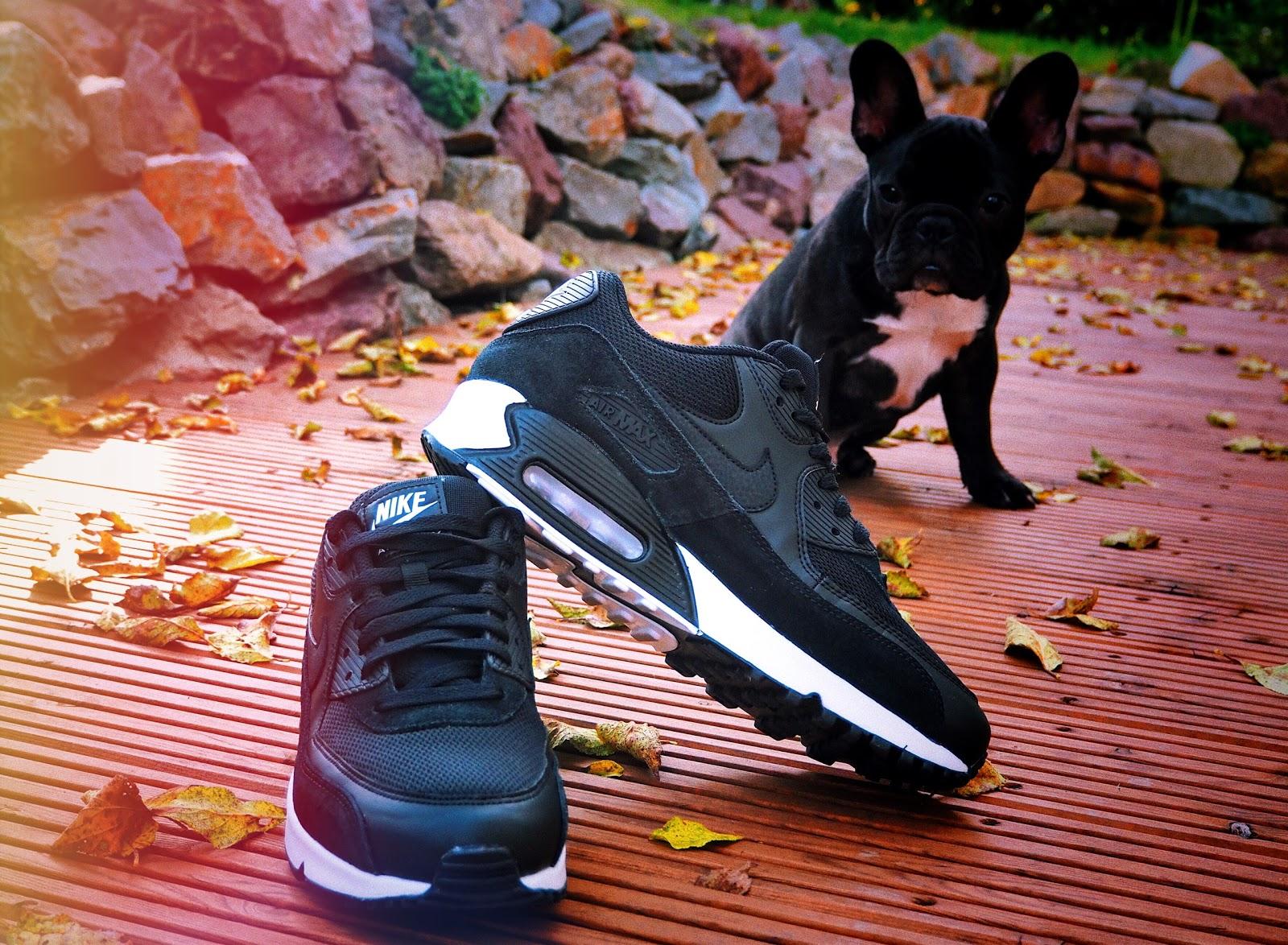 Nike Air Max 90 Essential Sneaker auf einer Holzterrasse auf dem Boden Laub und im Hintergrund eine Natursteinmauer und eine französische Bulldogge