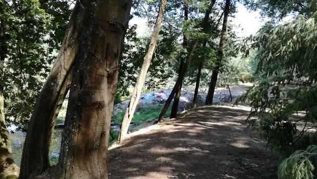 Zona margem do Rio Cávado