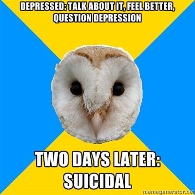 bipolar owl depression meme