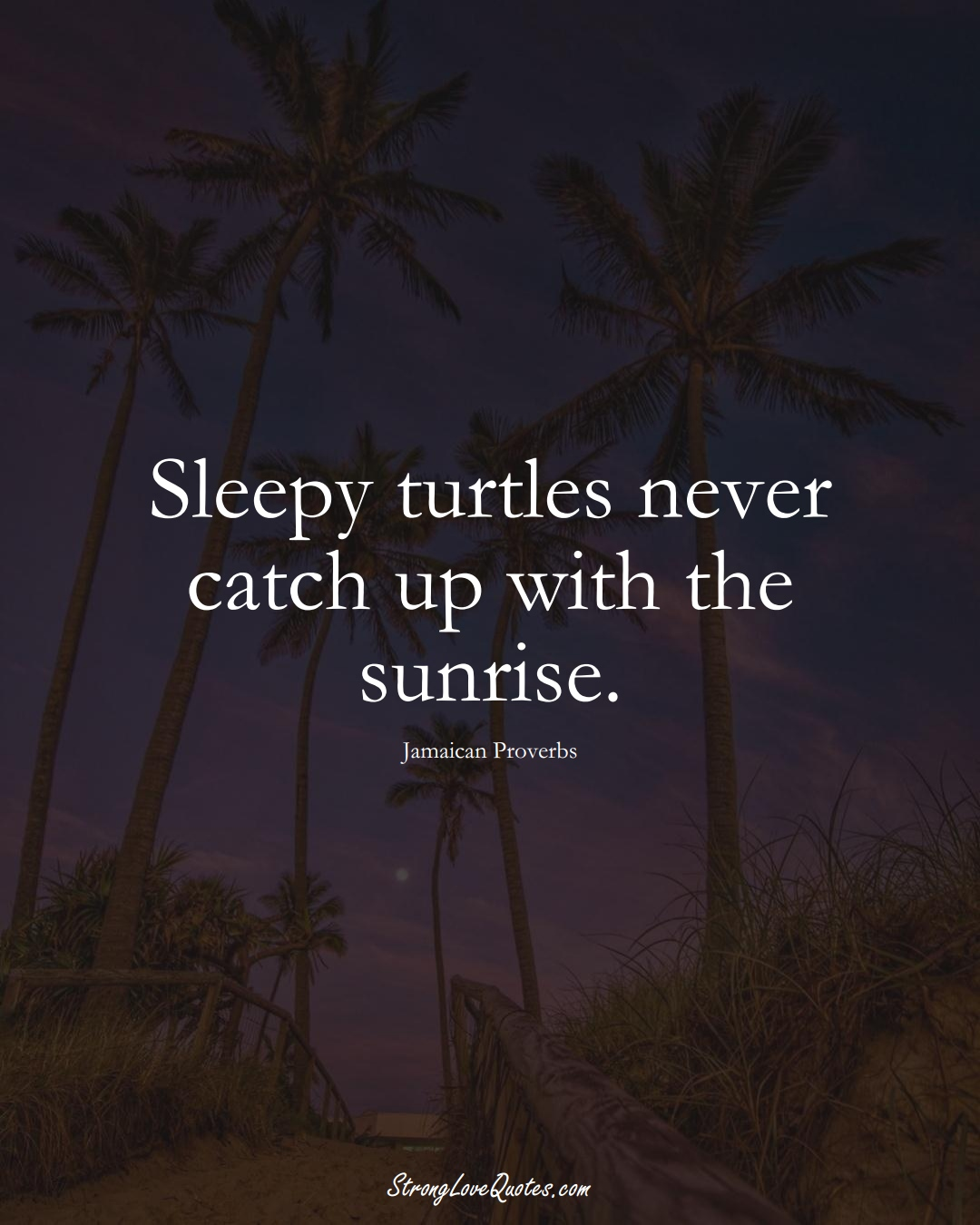 Sleepy turtles never catch up with the sunrise. (Jamaican Sayings);  #CaribbeanSayings