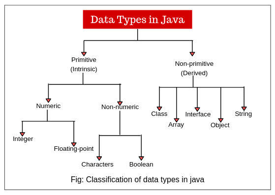 Classification of data types in java