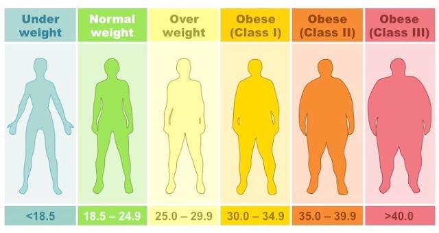 Yuk Cek Status Berat Badan Anda dengan Kalkulator BMI Ini!