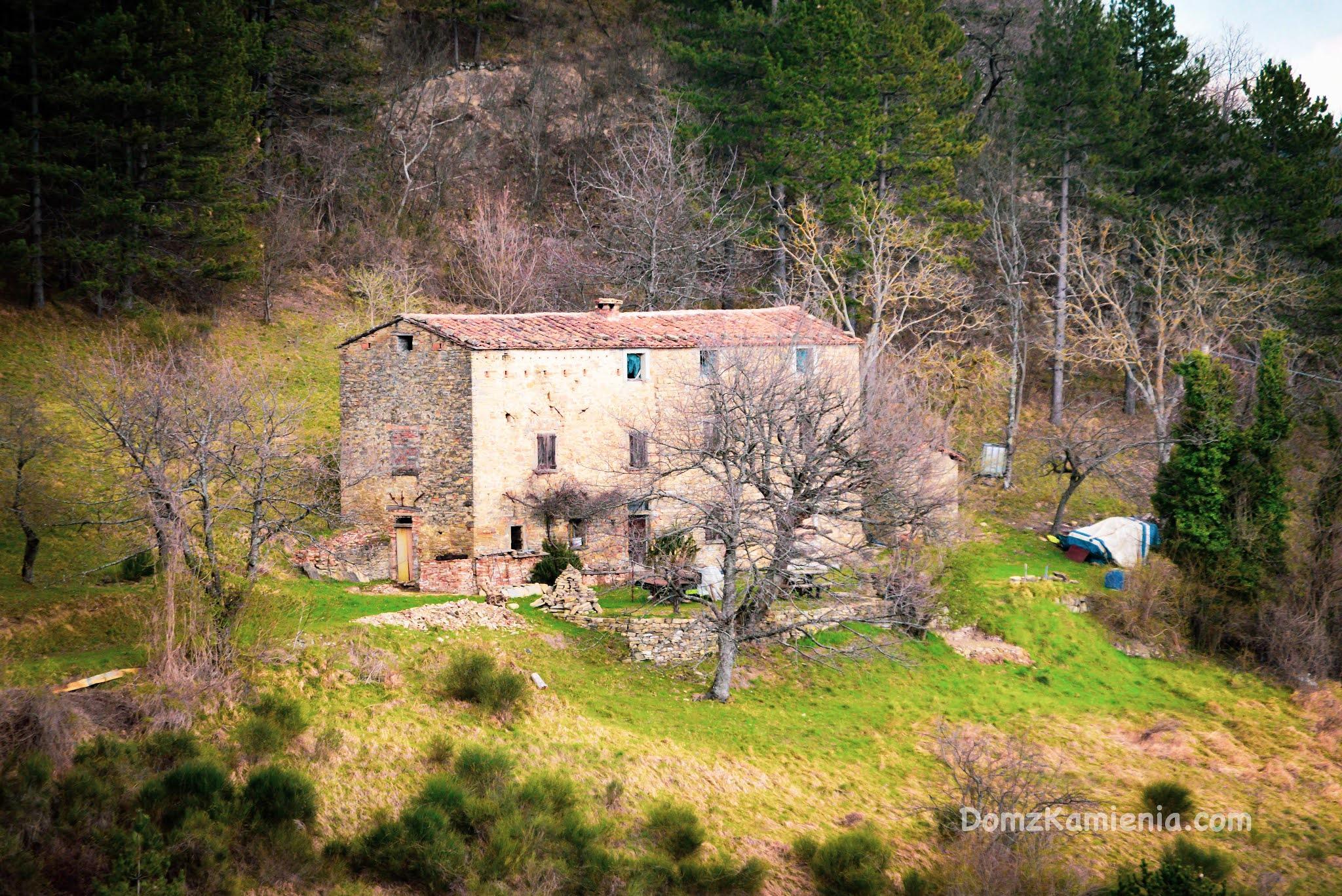 Dom z Kamienia blog, Marradi gaj kasztanowy