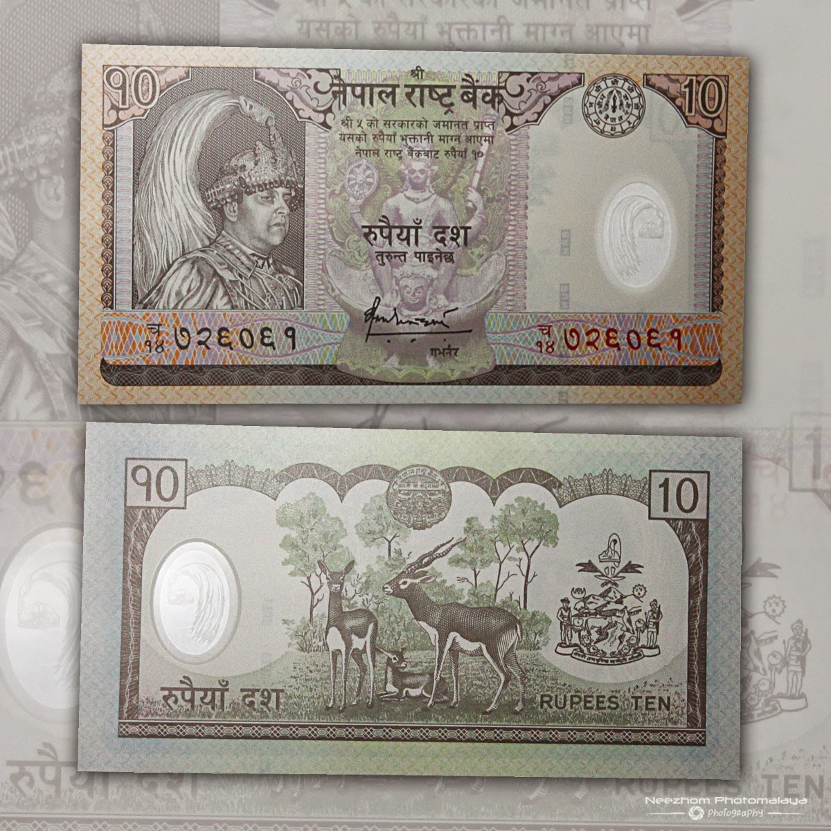 Duit polymer Nepal 10 Rupees