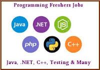 Java, C++, Testing
