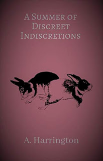A Summer of Discreet Indiscretions - erotica book promotion sites A. Harrington