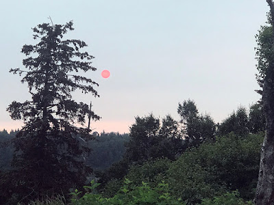 This Red Sun Greeted Me as I started Chores at 6:30 a.m. in Ninilchik, Alaska