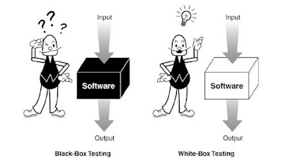 pci dss whitebox va blackbox