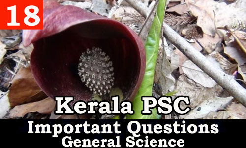 Kerala PSC - Important and Expected General Science Questions - 18