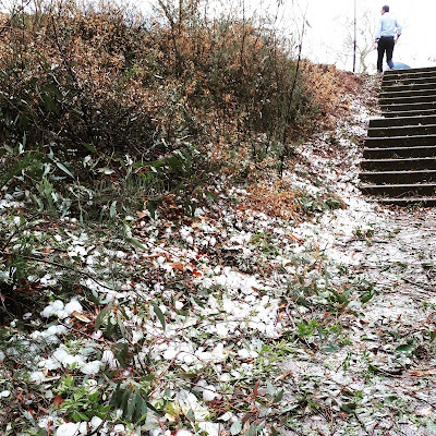 Hillside covered in hail stones, with stairs leading upwards. At the top of the stairs stands a man.