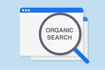 4 Cara Meningkatkan Website di Google Bagi Pemula Secara Organik