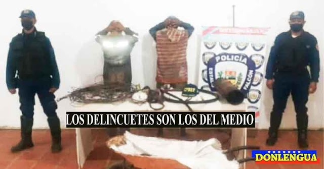 Recogelatas detenidos por robarse unos cables oxidados en Paraguaná