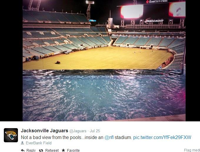 jaguar swimming pool - photo #41