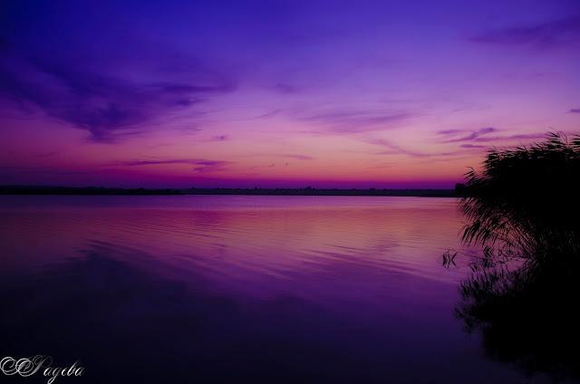 Пурпурно-небе-Purple-sky