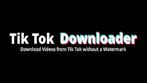 Pengunduh Video Tiktok - Tanpa watermark