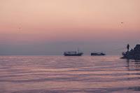 Galilee Photo by Dave Herring on Unsplash