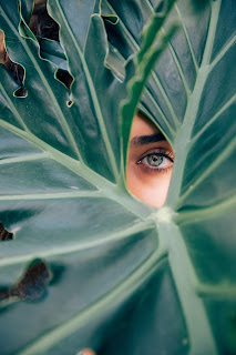 Picture of lady peeking through leaf by Drew Graham