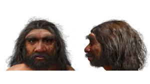 Scientists unveil Homo longi aka 'dragon man,' the latest addition to the human evolution tree (Photos