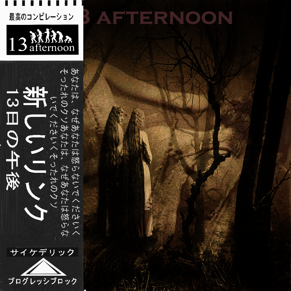 13 afternoon VOL. 544