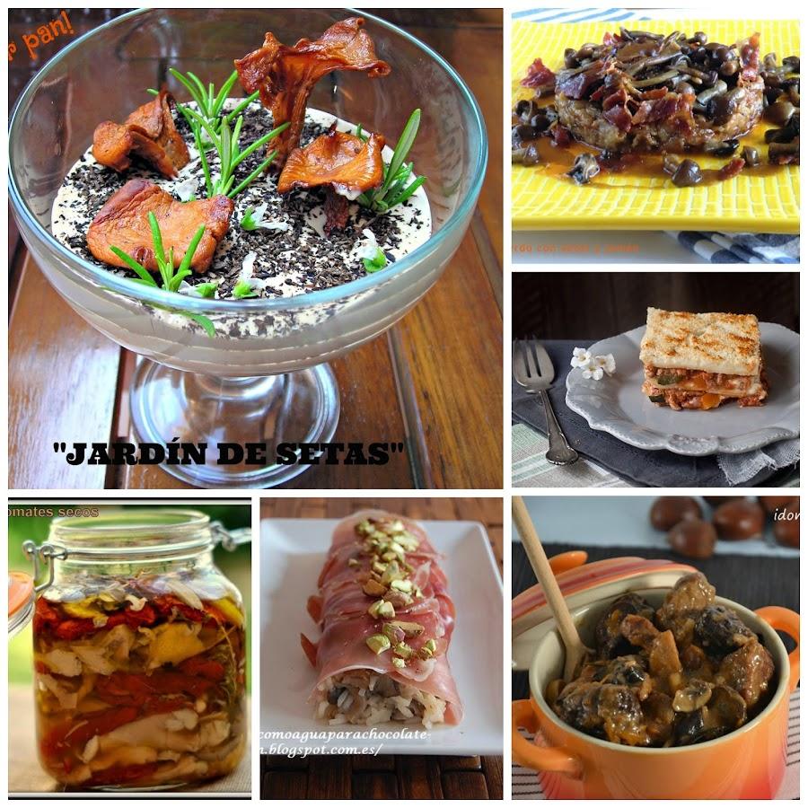 Cocinar para ni os 9 recetas sanas y ricas con verduras - Como cocinar setas ...