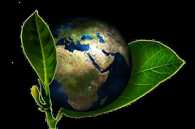 تحميل كتاب جغرافية الغلاف الحيوي-البيوجوغرافيا- النبات والحيوان pdf