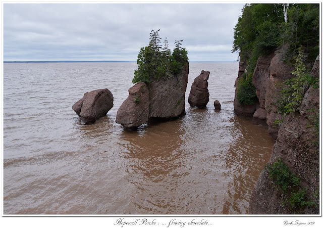 Hopewell Rocks: ... flowing chocolate...