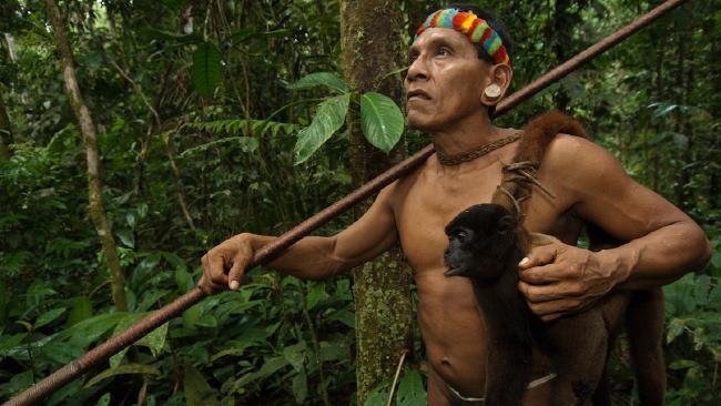 By. βουλευτές ως χιμπατζήδες μέσα στην Βουλή, βγαίνει σε δημοπρασία.