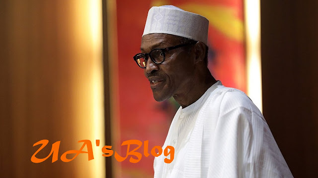 2nd Term: I'll shock those who call me 'Baba Go Slow' — Buhari