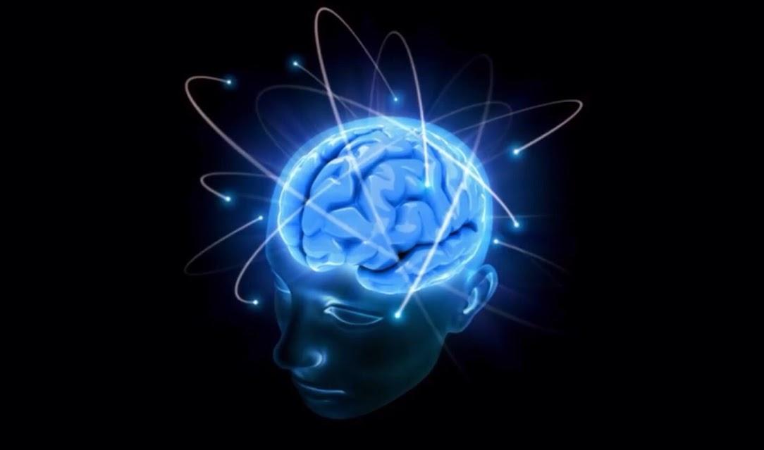 O Efeito da Crença: Como a mente consegue ser mais forte que a programação genética?