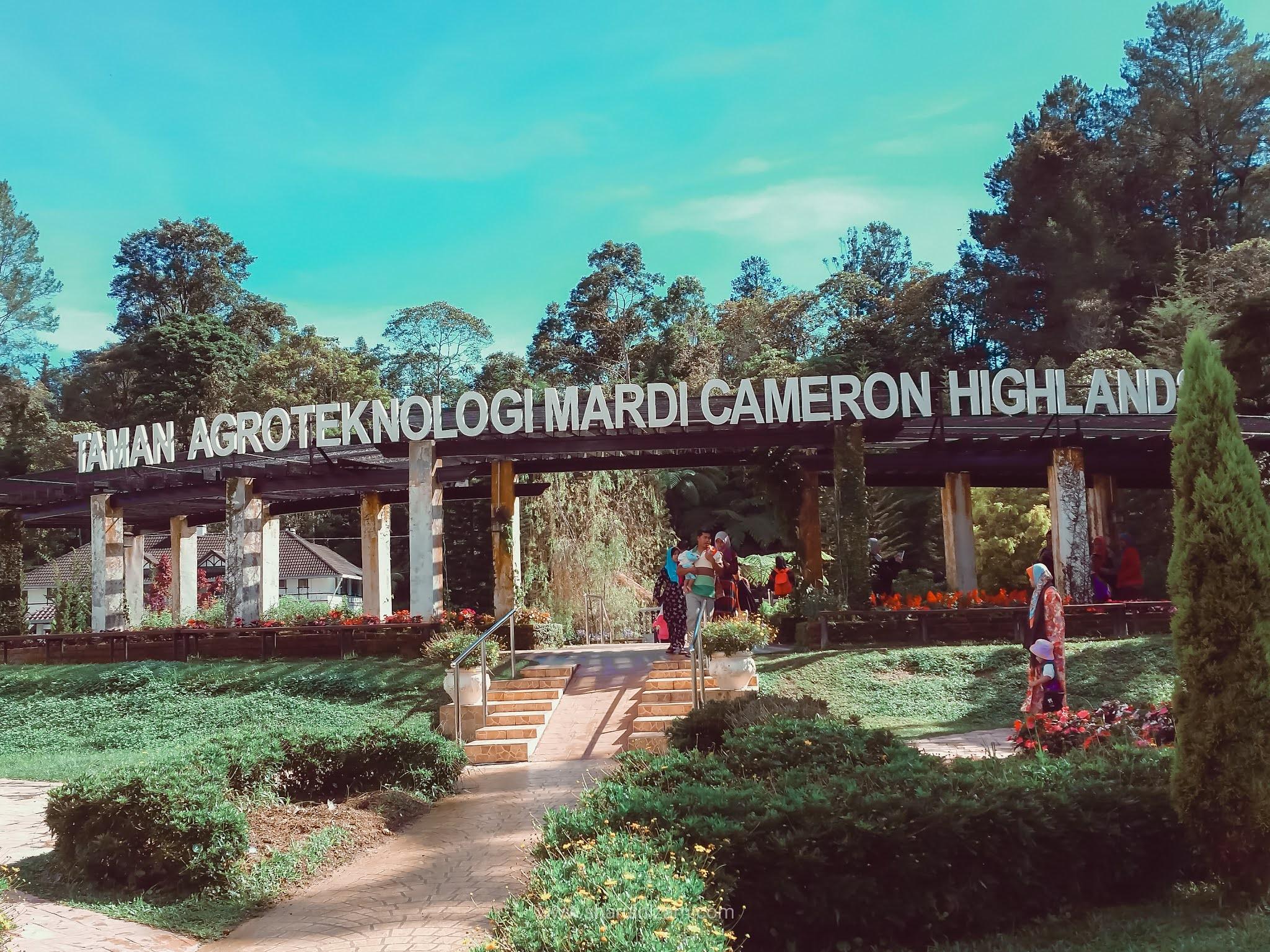 Taman Agroteknologi MARDI, Cameron Highland