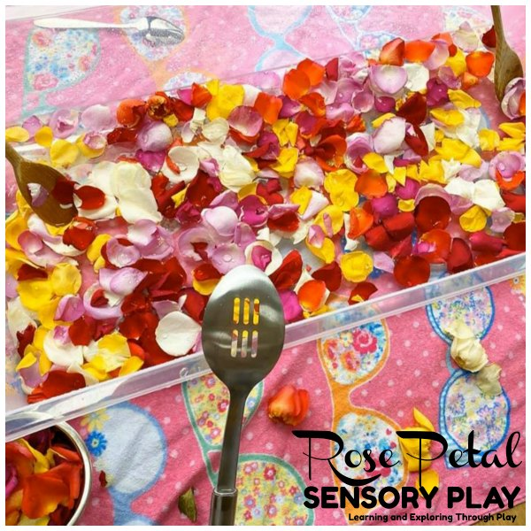 Rose Petal Water Sensory Play