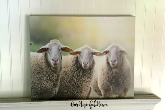 sheep trio canvas wall art farmhouse decor