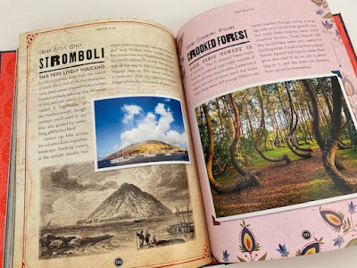 Hidden Wonders book review inside