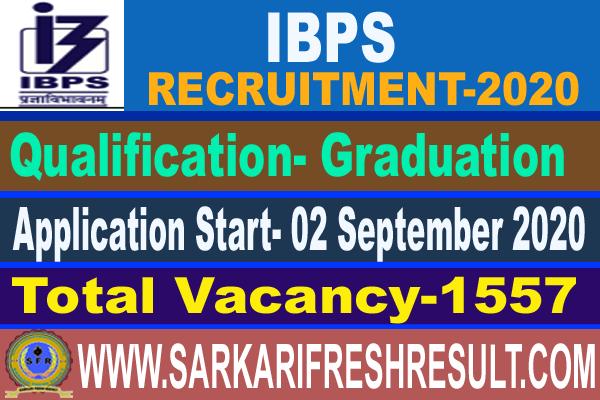 IBPS Clerk X Recruitment 2020 - Online Application for 1557 Positions.