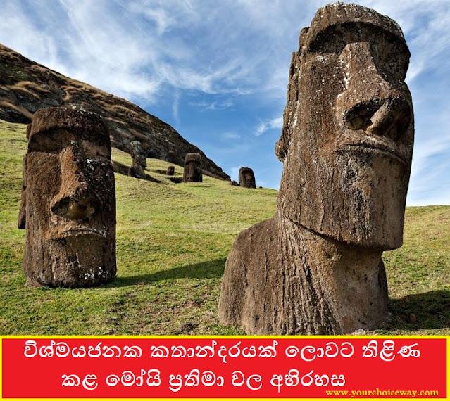 විශ්මයජනක කතාන්දරයක් ලොවට තිළිණ කළ මෝයි ප්රතිමා වල අභිරහස (Moai Statues) - Your Choice Way