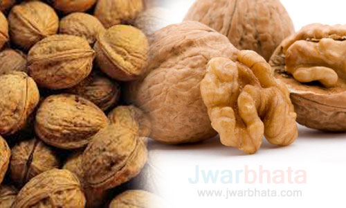 walnuts for good health