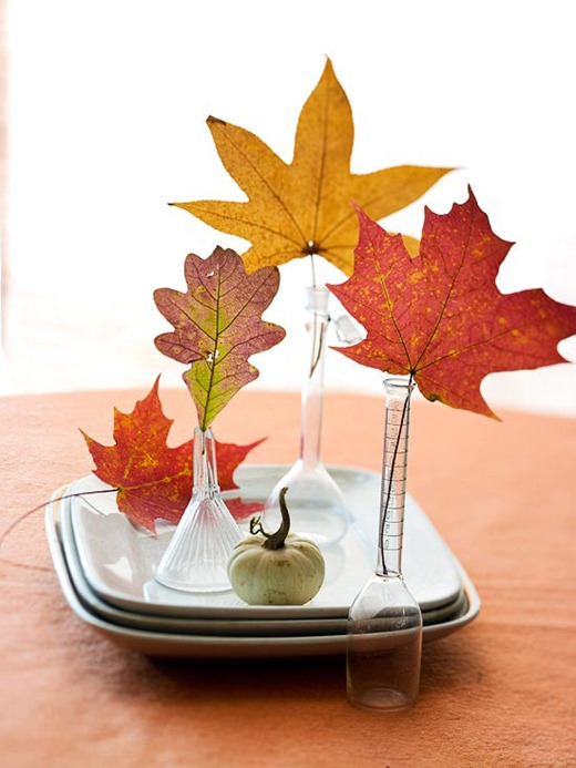 white plates on table with little vases holding Fall leaves, little white pumpkin