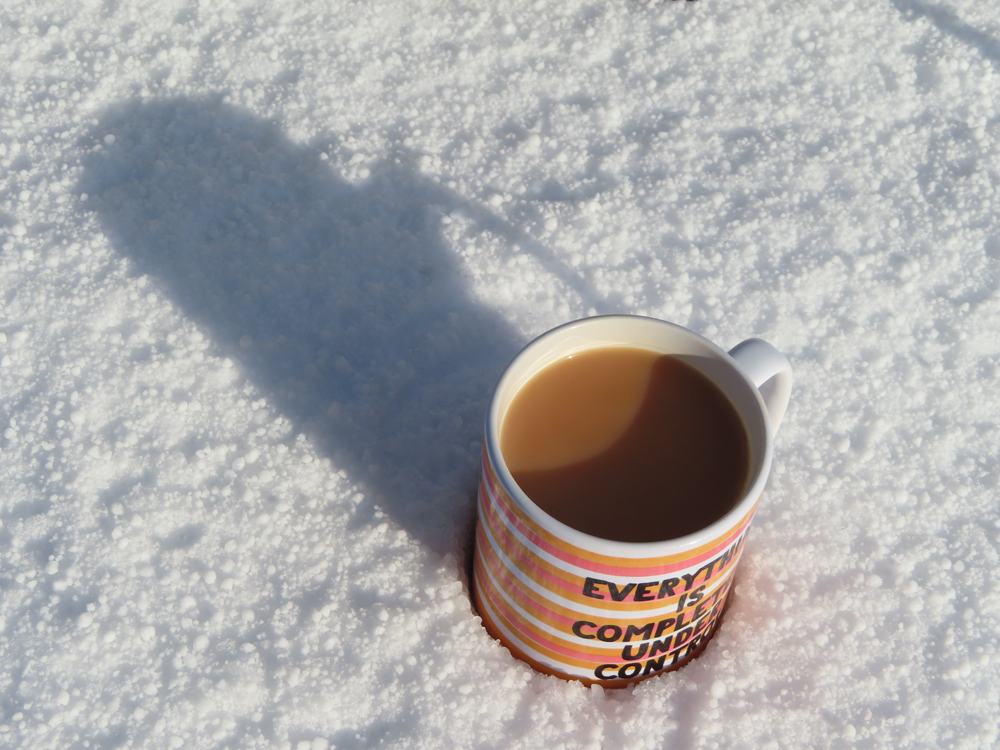 """Mug reading """"Everything Is Completely Under Control"""" sinking into deep snow"""