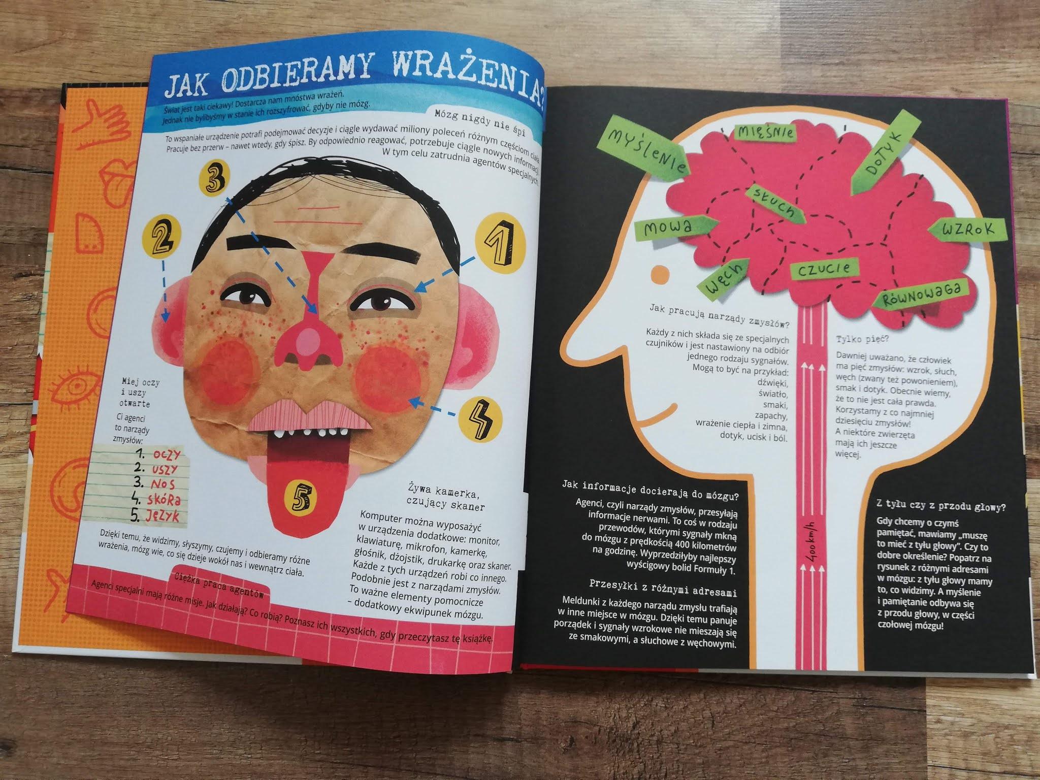 Książka dla dzieci Nasza Księgarnia